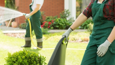 Have your garden maintained by a professional