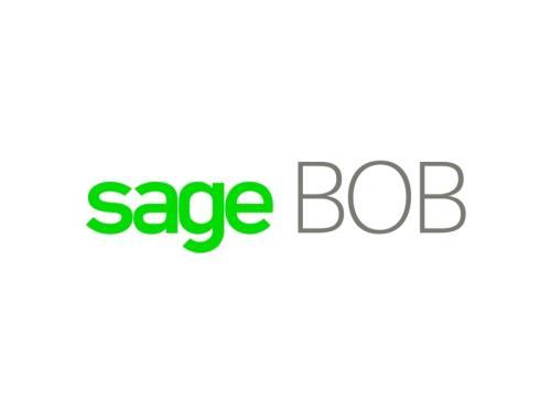 SAGE BOB (Comptabilité et Gestion Commerciale)