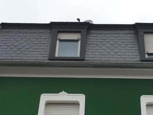 Rénovation de toiture en ardoise naturelle