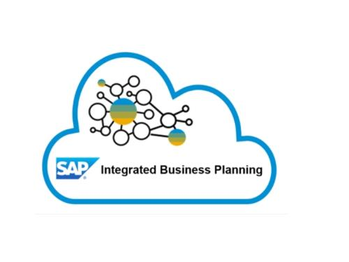 Step in for SAP IBP