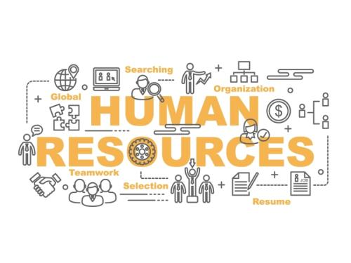 Gestion ressources humaines
