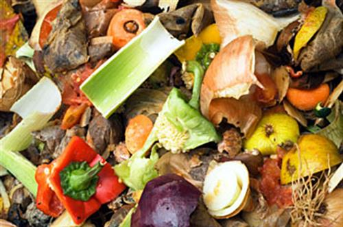 Erfassen und Verwerten von Speiseresten