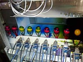 Oeufs colorés ferme Mathay Luxembourg