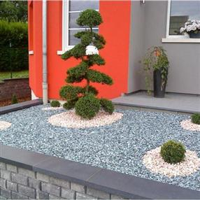 Decorative stones with bonsai