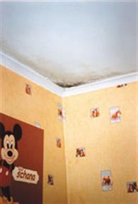 Moisissure sur les murs