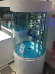 Poisson de mer info poisson luxembourg editus for Aquarium 350 litres