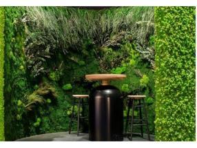 Mur végétal