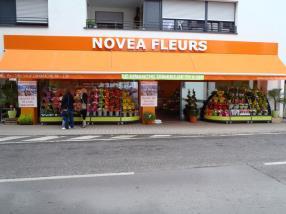 Novea Fleurs