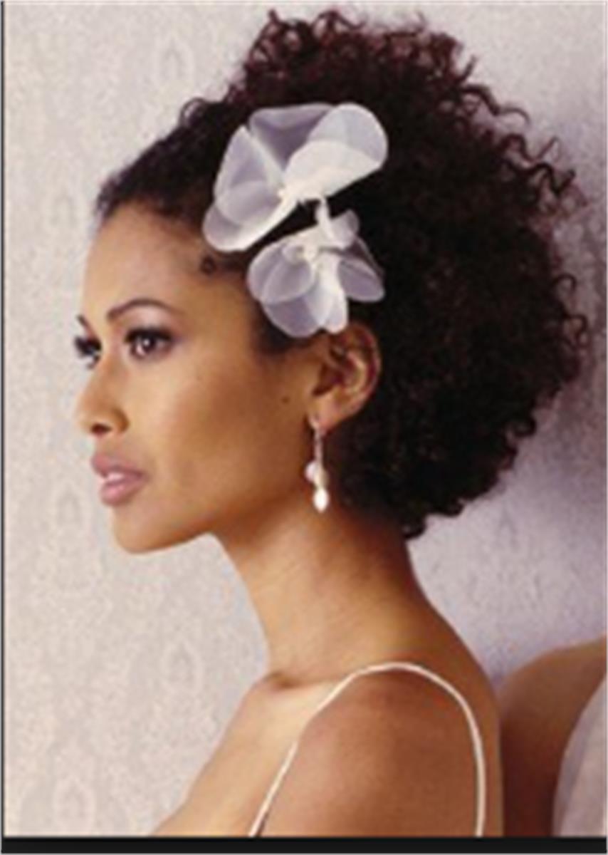 Salon de coiffure aldina coiffure lissage br silien for Salon de coiffure pour lissage bresilien